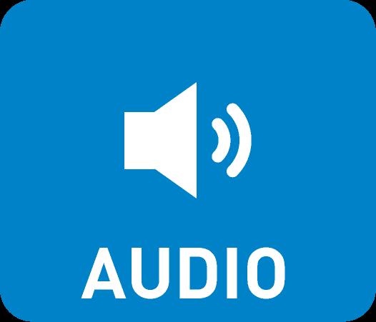 Questa immagine ha l'attributo alt vuoto; il nome del file è audio.png